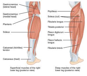 Calf Strain in Runners